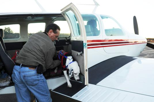 Pilot Charles Malo, 65, of Easton, who donates his time to Pilots N Paws, flew 8-month-old hound mix Dasher to Taunton Municipal Airport on Friday.