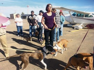 Courtesy Supporters welcome returning pitbulls Benny and Eddie as they deplane in Alamogordo after their long journey from North Carolina.